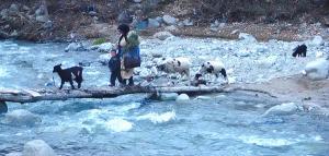 Berbers crossing the river