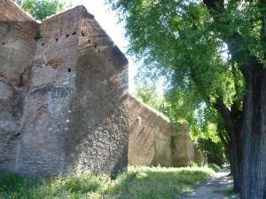 ROME 2 004