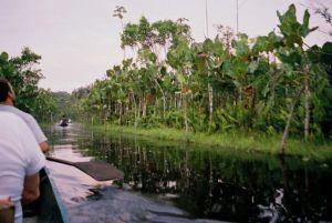 amazon rivercruise