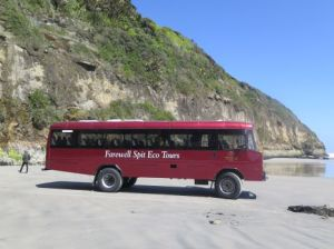 eco bus tour